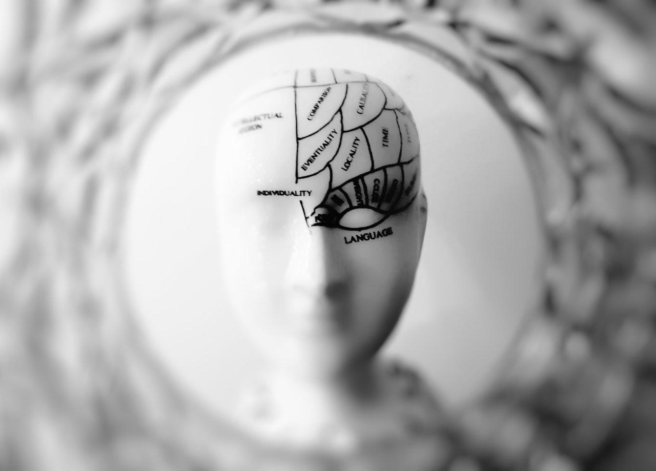 Head bust of human brain - Jean-Francois de Clermont-Tonnerre